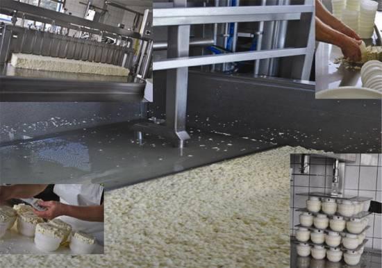 De kaas productie op de Kleine Kazenboerderij